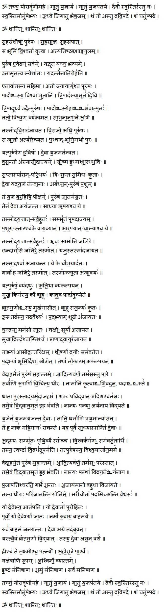 purusha suktam lyrics in sanskrit