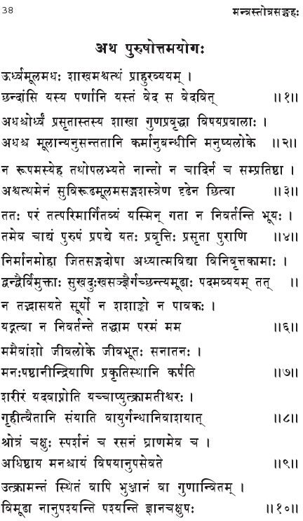 chapter-15-purushottam-yoga-gita