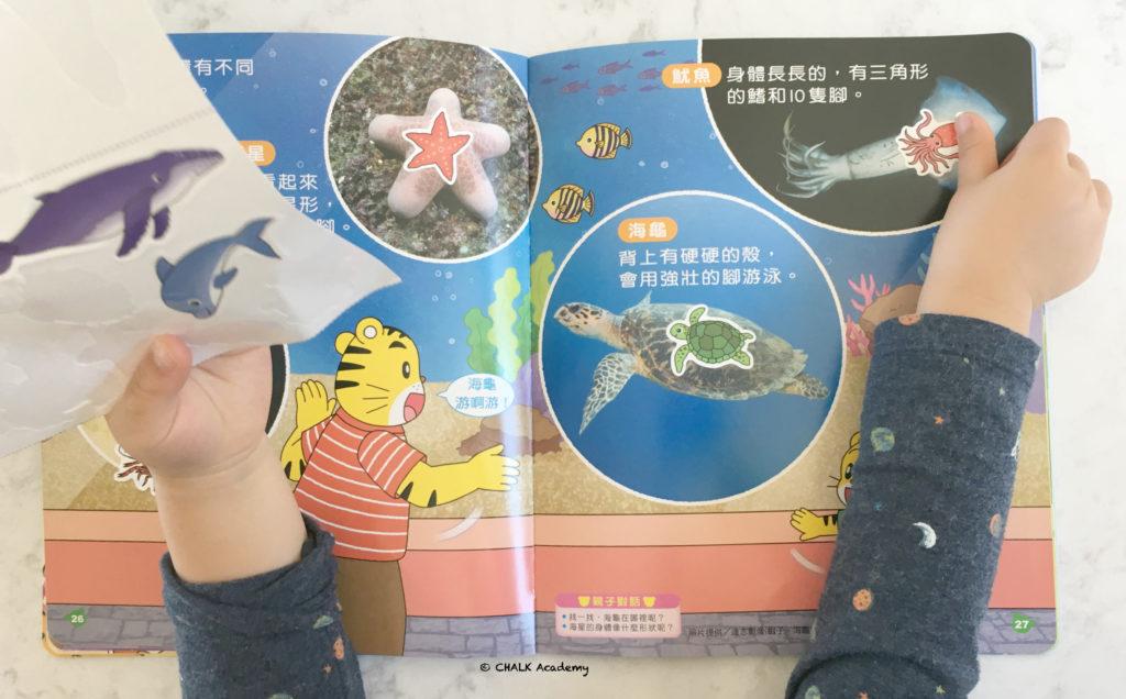 巧虎 (Qiao Hu) ice cream toy