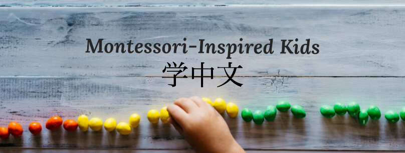 Montessori Kids Learning Chinese and English