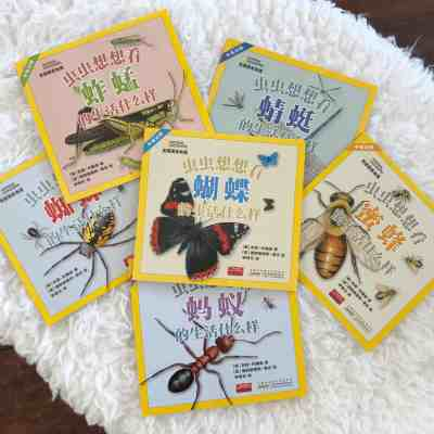 National Geographic Insects – Bilingual Chinese and English Science Books for Kids