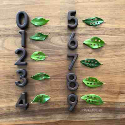 Fine Motor Math Activity with Hole-Punched Leaves!