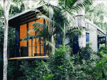 The tree house at pethers rainforest retreat