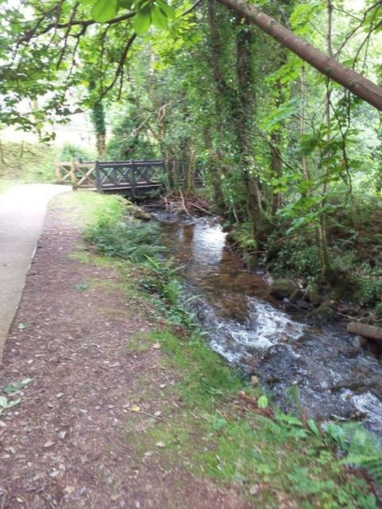 The stream at glencar