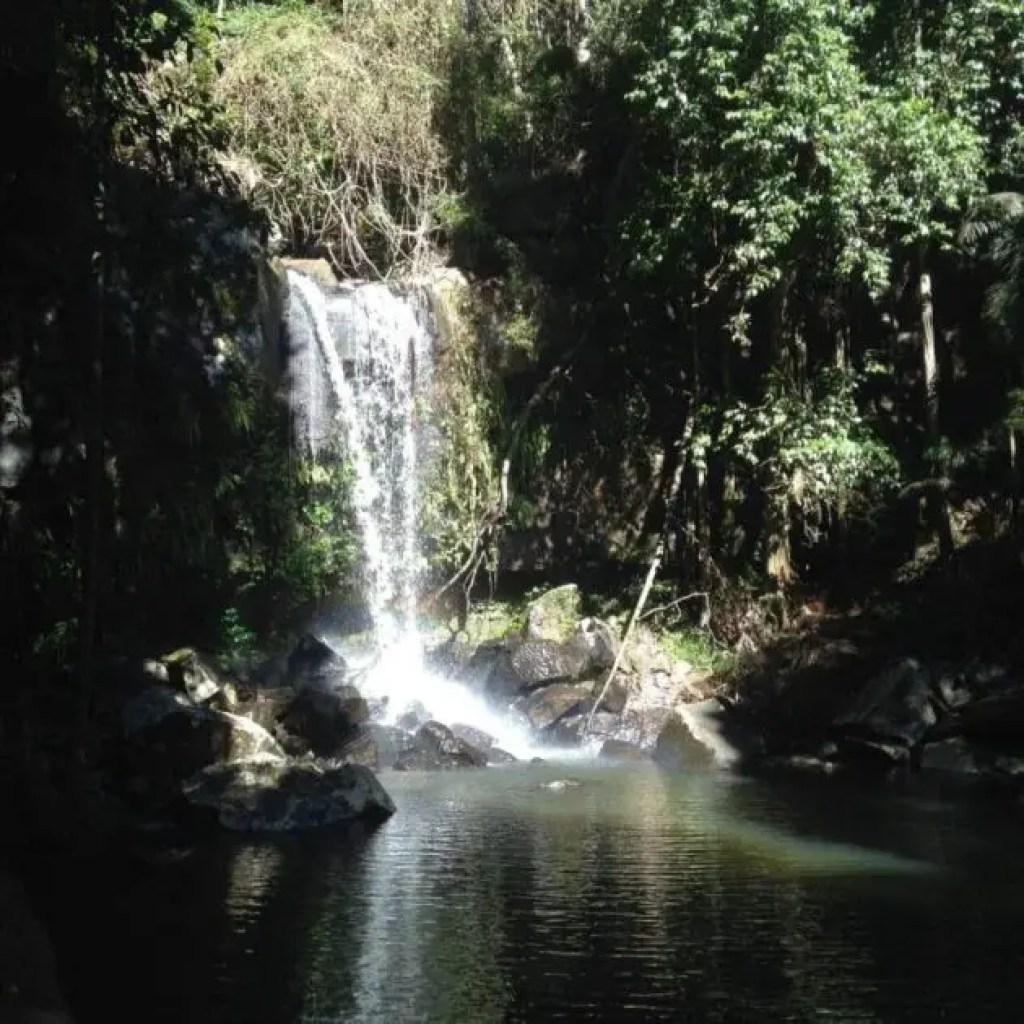 Mount Tamborine Gold Coast