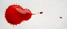 Modelling blood