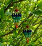 Le perroquet est dans les arbres