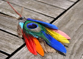 Oh les jolies plumes
