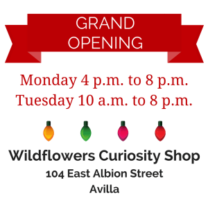 Wildflowers Curiosity Shop Grand Opening
