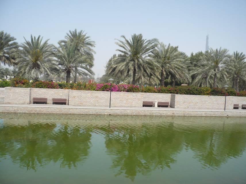 Al Safa Park in Dubai, UAE (5/6)