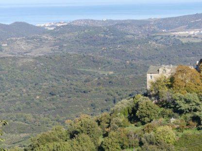 Vue sur St Florent depuis le village