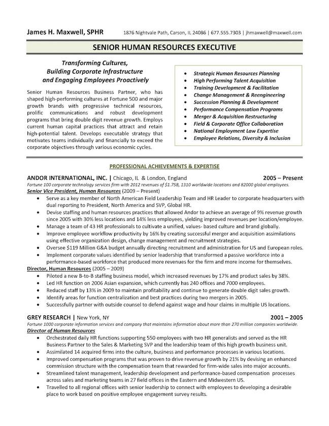 Executive Resume Samples Resume Sample