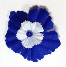 Le bleuet de France.