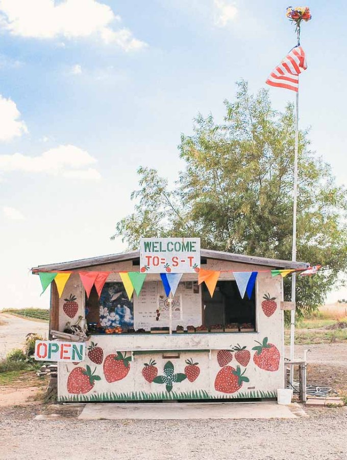 The Most Adorable Strawberry Stand in Sacramento