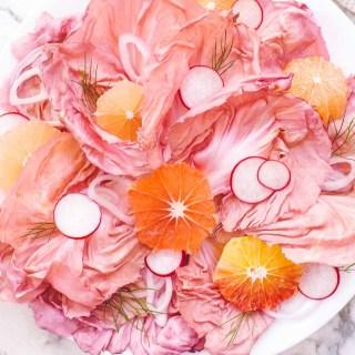 Pink radicchio salad in a circle with orange and radish slices