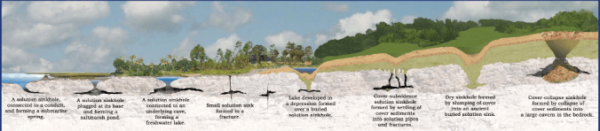 Sinkhole formationSource: Florida Dept. of State Geology Dept.