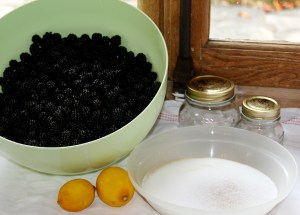 Blackberry jam fixings from a couple of years ago Photo: PK Read