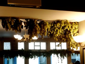 Hop garlands. Photo: PK Read
