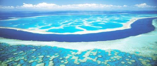The Great Barrier Reef is the longest coral reef on the planet, and is the largest single structure made by living creatures. Source: New7Wonders