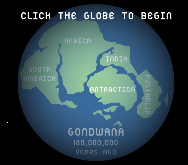 Animated illustration of the break-up of Gondwana into present-day continents. Based on the bat fossils found, it's assumed that bats which originated in Africa, migrated into Australia, and were able to cross Antarctica into what is now South America. Source: Churchilll Science