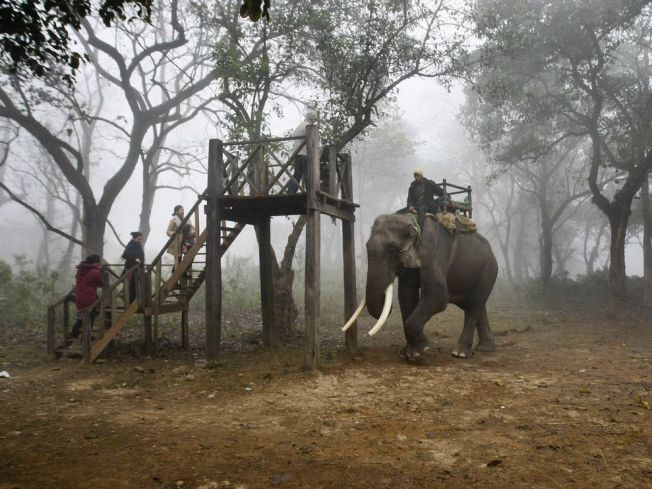 Tourists prepare to ride an elephant during a wildlife safari in Chitwan National Park. Photo: Gemunu Amarasinghe / AP