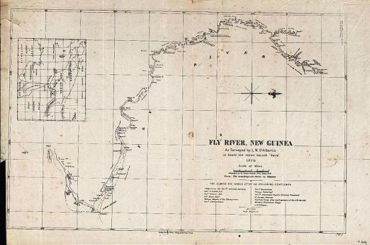 Survey map (1876) of the Fly River in Papua New Guinea. Approximately 25th in terms of size and volume when it comes to the world's major rivers, it is the largest remaining river that is still completely undammed. Source: Wikipedia
