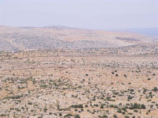 Syrian desert. Photo: Marija Miloradovic/TrekEarth