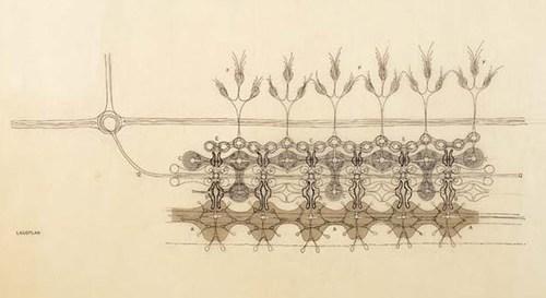 Floraskin – Huth & Domenig Via: Data Is Nature