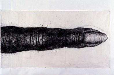 Primate finger Artist: Lisa Roet