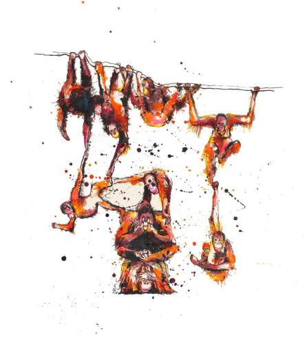 A buffoonery of orangutans Artist: Kim Rebecca