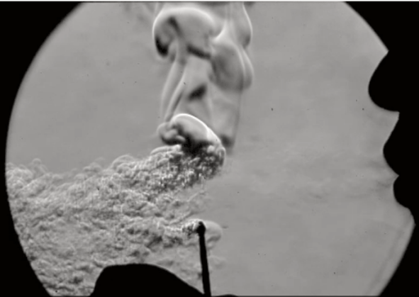 The flame goes out. V. Miller, M. Tilghman, R. Hanson/Stanford Univ.