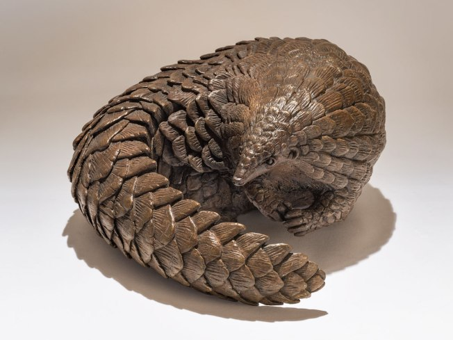 Bronze pangolin sculpture. Artist: Nick Mackman