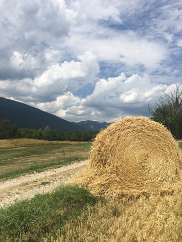 Hay bale, clouds, France, summer