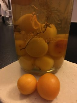 #vodka #plums #mirabelles #garden