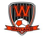 wayland soccer