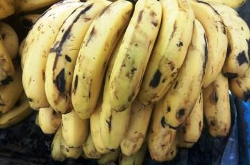 Maple Banana Breakfast Shake