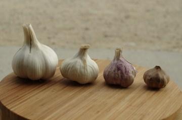 Garlic Popovers