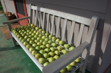 Gingersnap Pears