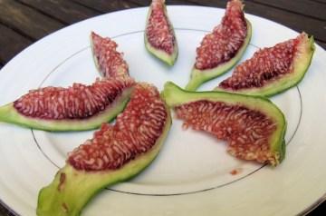 Fresh Fig Quesadillas