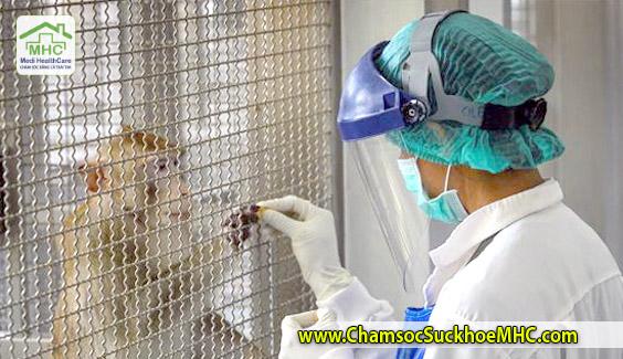 thai lan thu nghiem thanh cong vaccine covid-19 tren khi va chuot VJcare