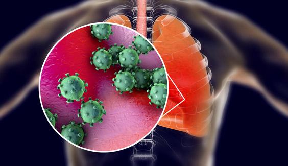 viem gan b man tinh covid-19  Người bệnh viêm gan mạn cần lưu ý gì giữa đại dịch COVID-19 ? viem gan b man tinh covid 19