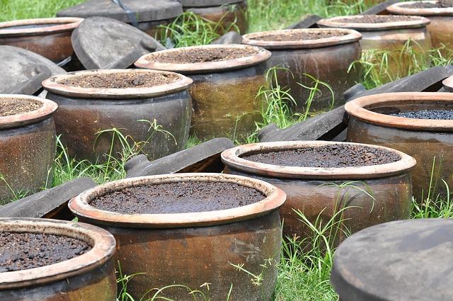 fermentation du soka