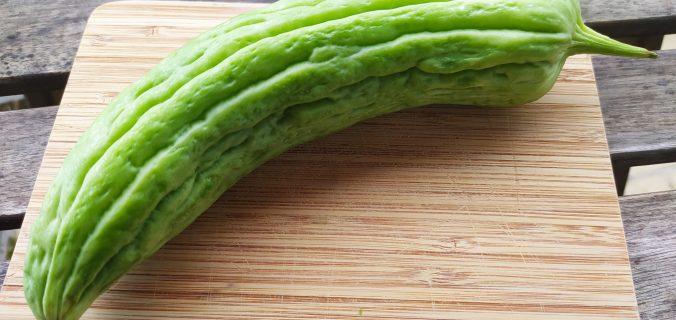 melon amer
