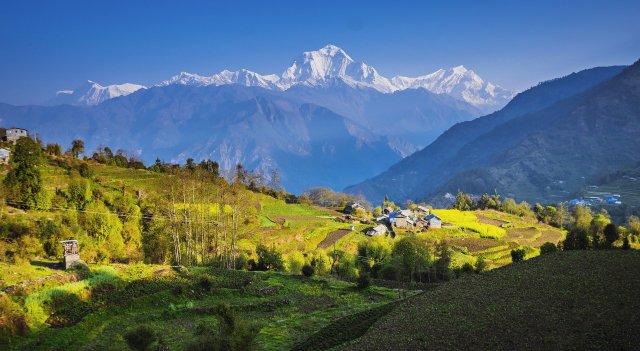 Pied de l'Himalaya