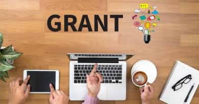 Government Grant