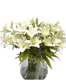 CF Cherish Bouquet