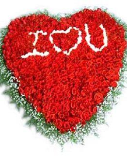 Chandigarh Florist Love You
