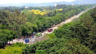 greenest-city-chandigarh