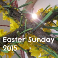 Easter Sunday: Daffodils Cross and Easter Eggs