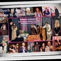 A Bunch of Amateurs - Review by Allison Symes